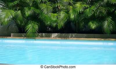 top view of crystal clean water surface in swimming pool and palm trees, sun shine bright water-pool loop background.