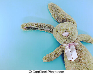top view of cute rabbit doll with space copy background
