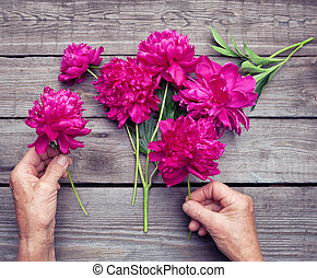 Top view of elderly woman's hand making a bouquet of red peony flowers. Flat lay