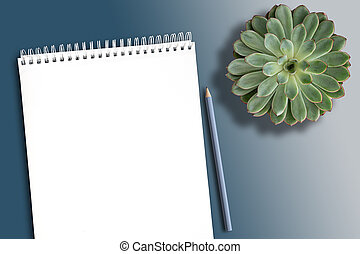 empty white spiral notebook on clean desk with potted succulent plant and pencil