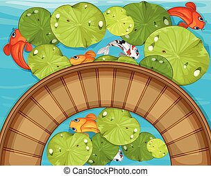Top view of fish and waterlily in the pond