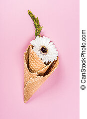 top view of flower in sugar cones laying on pink table, still life