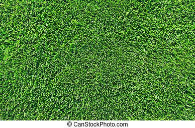 fresh lawn grass - top view of fresh lawn grass