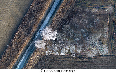 Top view of frozen stream and trees in field