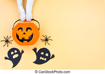 Top view of Halloween decoration, A hand of cat holding jack o lantern, ghost and spider on yellow background with copy space for text. halloween concept.