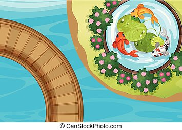 Top view of park with fish in pond