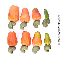 Top view of red cashew fruit isolated on white background