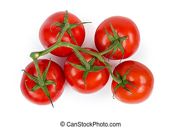 Top view of red tomatoes on branch on white background