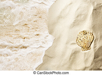 Top view of shells on the sandy beach with wave
