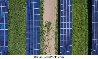 Top view of solar panels at power station