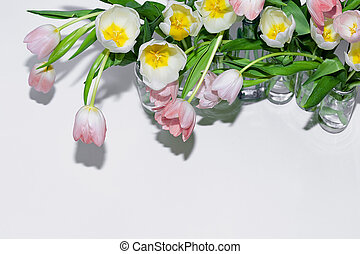 Top view of the bouquets of tulips in glass jars on a white background.
