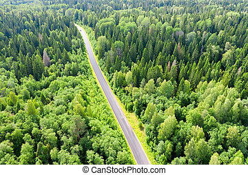 Top view of the road through the forest area