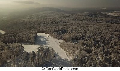 top view of the Russian Chelyabinsk forest: trees, fields,...