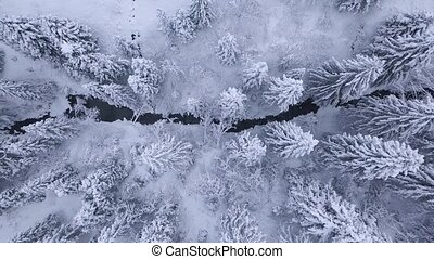 Top view of winter mountain river surrounded by trees and banks of snow-covered