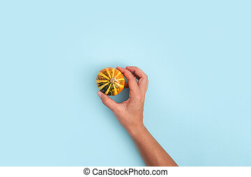 Top view of woman hands with pumpkin on blue background. Halloween, thanksgiving, harvest concept