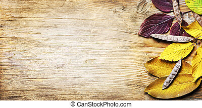 Top view of yellow autumn leaves frame on vintage wooden background. Fall season with brown beech leaf border on rustic table texture