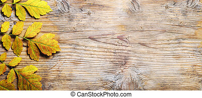 Top view of yellow autumn leaves frame on vintage wooden background. Fall season with brown yellow  leaf border on rustic table texture.
