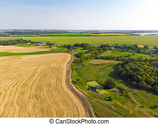 Top view on a field with beveled cereals and the village
