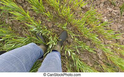 foot of a farmer in a field