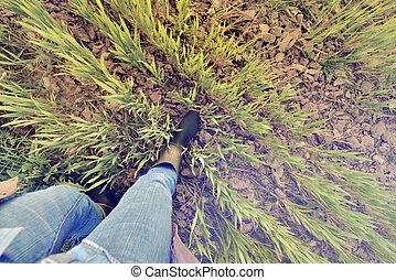 foot of a farmer walking in a field