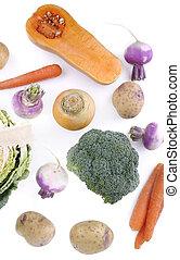 seasonal vegetables on white background