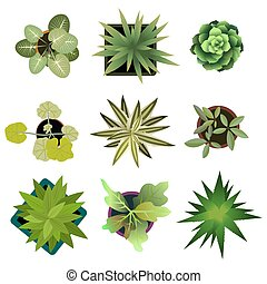 Top view. plants Easy copy paste in your landscape design...