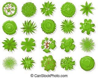 Top view plants. Tropical trees, green plant tree from above for aerial map isolated vector collection