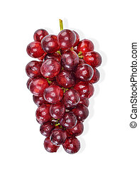 red grape with water drop isolated clipping path