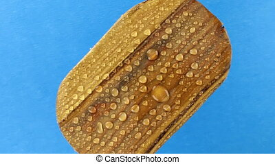 Top view, rotation of an old wooden oval board in raindrops...