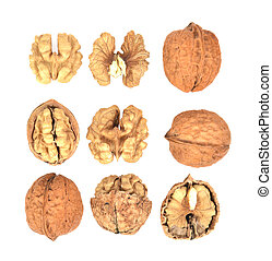 Top view set of Walnuts with isolated on white background