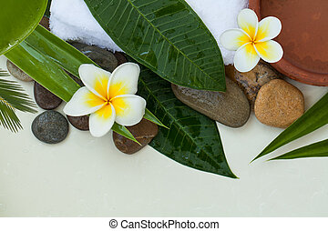 Spa stones with green leaves, flowers on white background