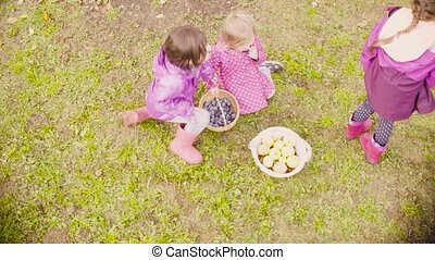 Three girls sitting on the grass and eating plums - Top...