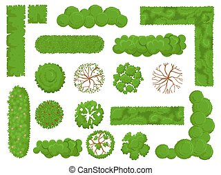 Top view trees and bushes. Forest tree, green park bush and plant map elements look from above isolated vector set
