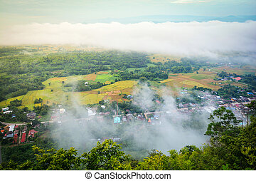 Top view village landscape mist / Beautiful morning with fog over misty on village