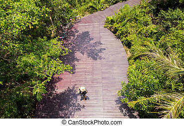 Top view young woman walking on wooden deck in a forest