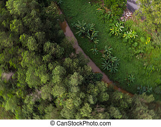 aerial view of winding road in a forest