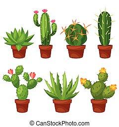 topf, abstrakt, blume, kaktusse, sammlung