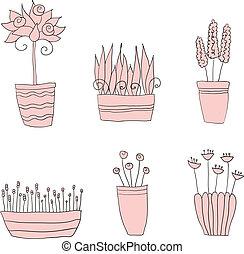 topf pflanzt, mit, blumen, und, blätter