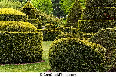 topiary, longwood, pa., jardin, jardins