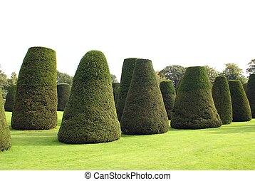 topiary, parc, jardin, arbres, ou