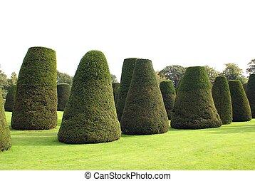 topiary, park, tuin, bomen, of
