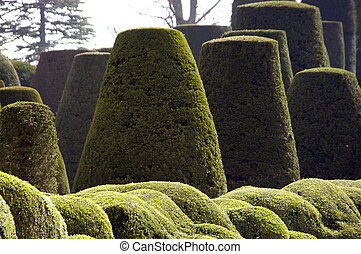 Topiary Shapes - Clouds of topiary bushes