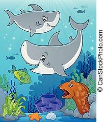 topic, サメ, 5, イメージ