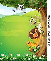 topo árvore, animais, colinas, escondendo