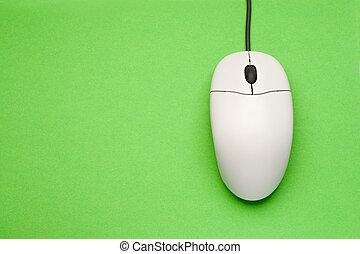 topo, computer, verde, isolato, fondo