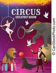 topo grande, circo, animal, mágico, acrobata