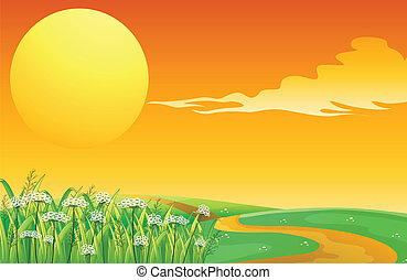 topo, pôr do sol, caminho, colina