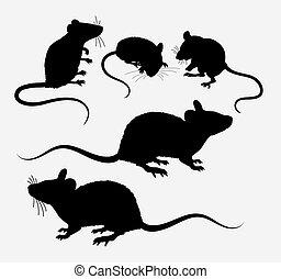 topo, ratto, silhouette, animale
