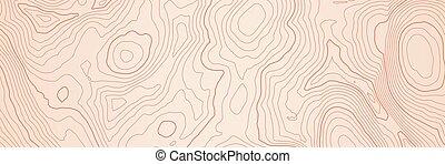 topografisk, höjd, abstrakt, kartlagt fond, fodrar