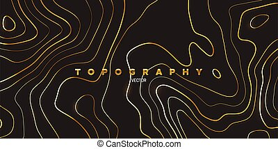 Topography relief. Abstract background. Vector illustration...